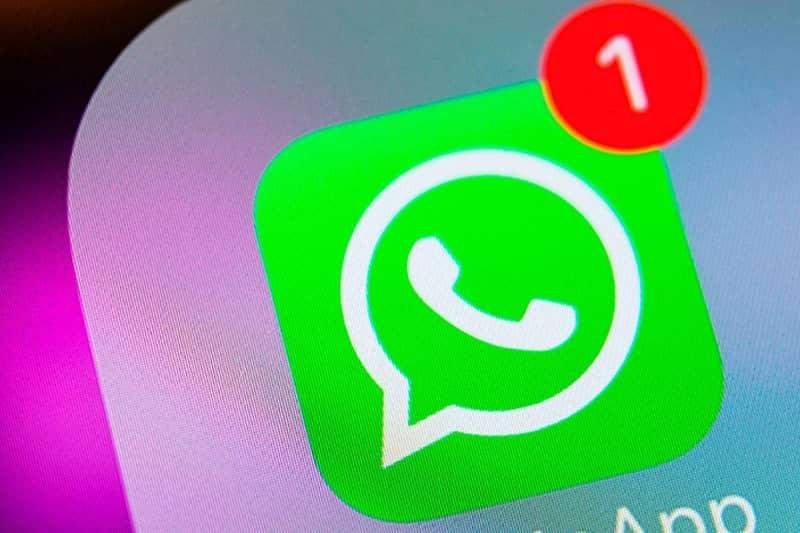 notificacion whatsapp