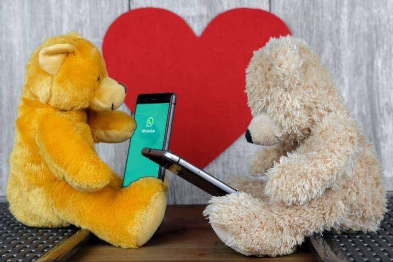 oso peluche conversando whatsapp